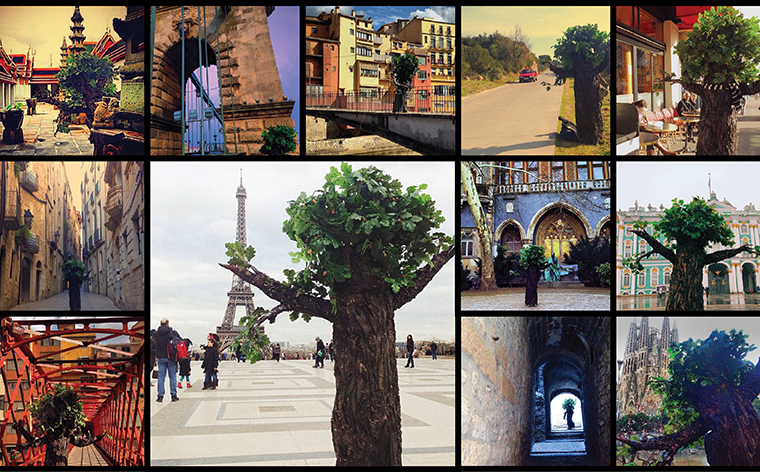 You are not a tree… so travel