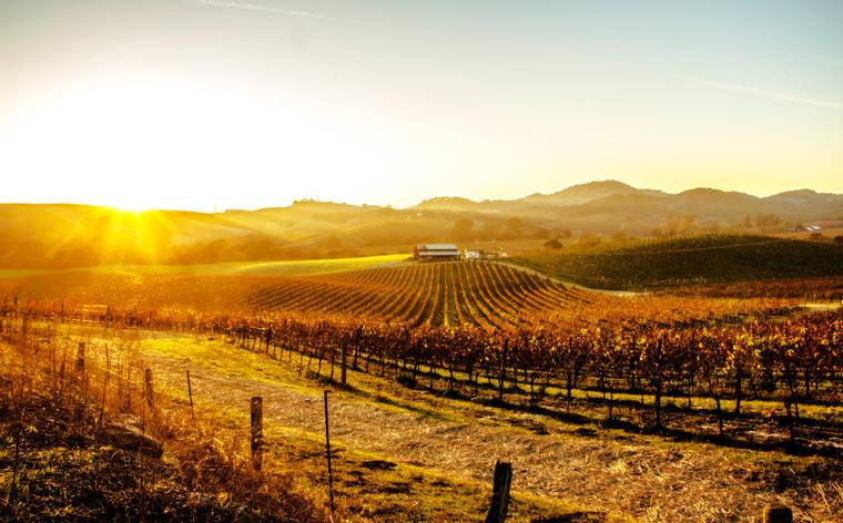 Where to see autumn foliage along the US' West Coast