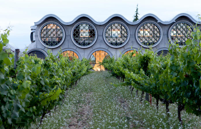 Awake to the view of a vineyard at Cava & Hotel Mastinell