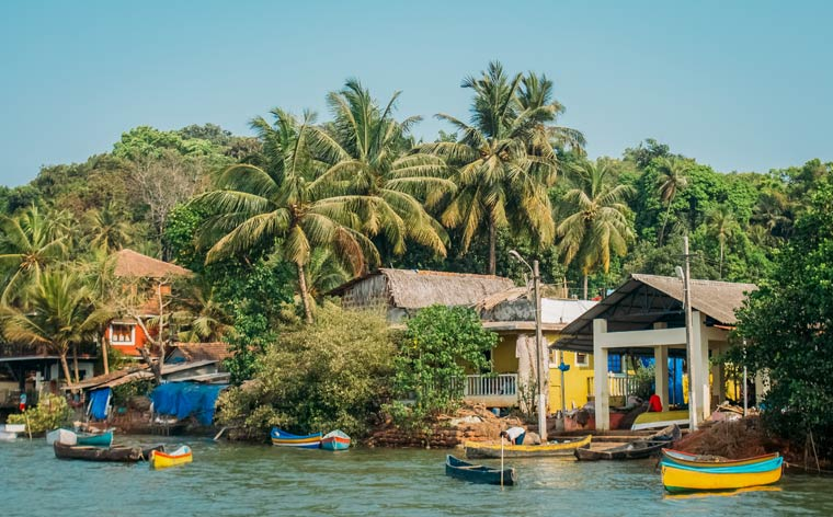 India tripping: a cross-country adventure from Goa to Kerala