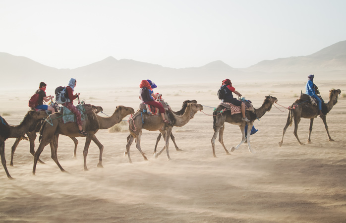 What is everyone's travel preferences? Car, train, camel?