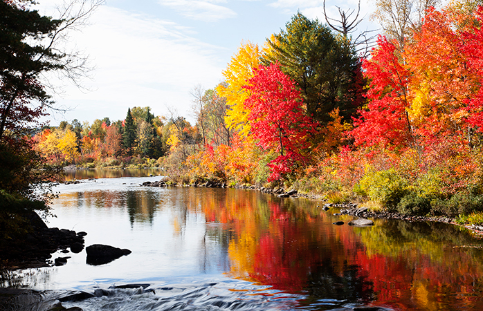 Fall in love with the colours of Ontario autumn