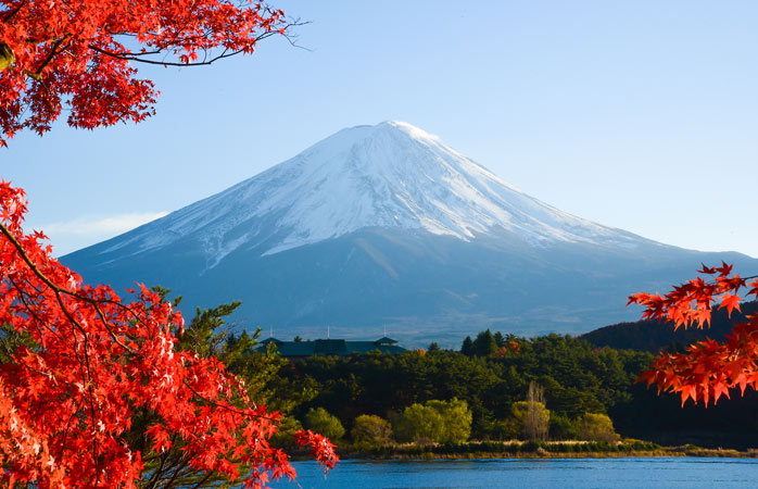 Mount Fuji surrounded by autumn leaves