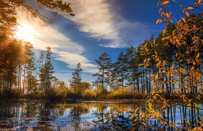 Autumn colours along the Ob River