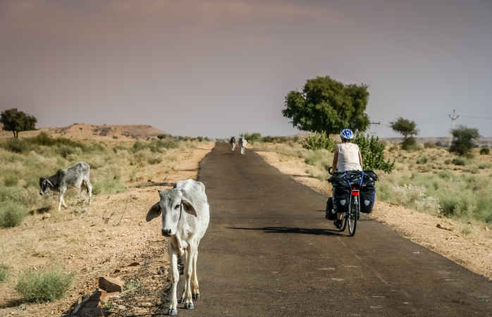 Biking from Jodhpur to Udaipur
