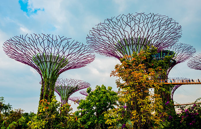 Beautiful, impressive and sustainable: Singapore's sky gardens